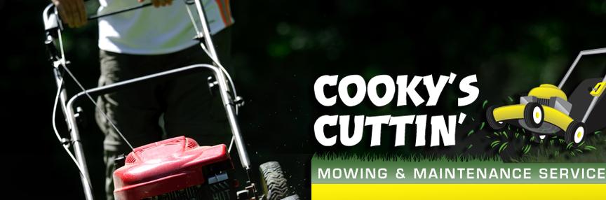 lawnmowing sydney - photo#25